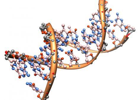 """Молекула ДНК может исцелиться при помощи """"ЧУВСТВ"""" человека"""